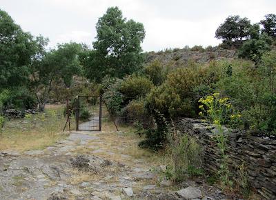 Ruta a la cascada del Aljibe en Campillo de Ranas