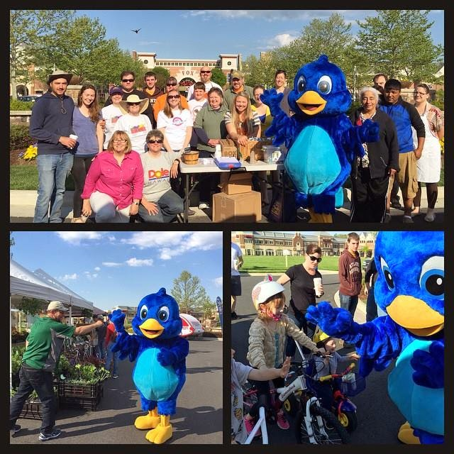 Brambleton's mascot, Bruno the Blue Bird, officially opened the Brambleton Farmers Market for the 2015 season!
