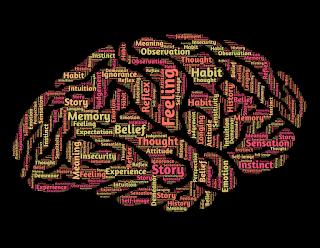 ¿En qué se parece el cerebro humano a una computadora? (Cuadro comparativo con semejanzas y diferencias + breve análisis)