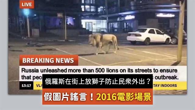 俄羅斯政府在街上放了800只獅子和老虎來防止民眾外出 謠言 假圖片