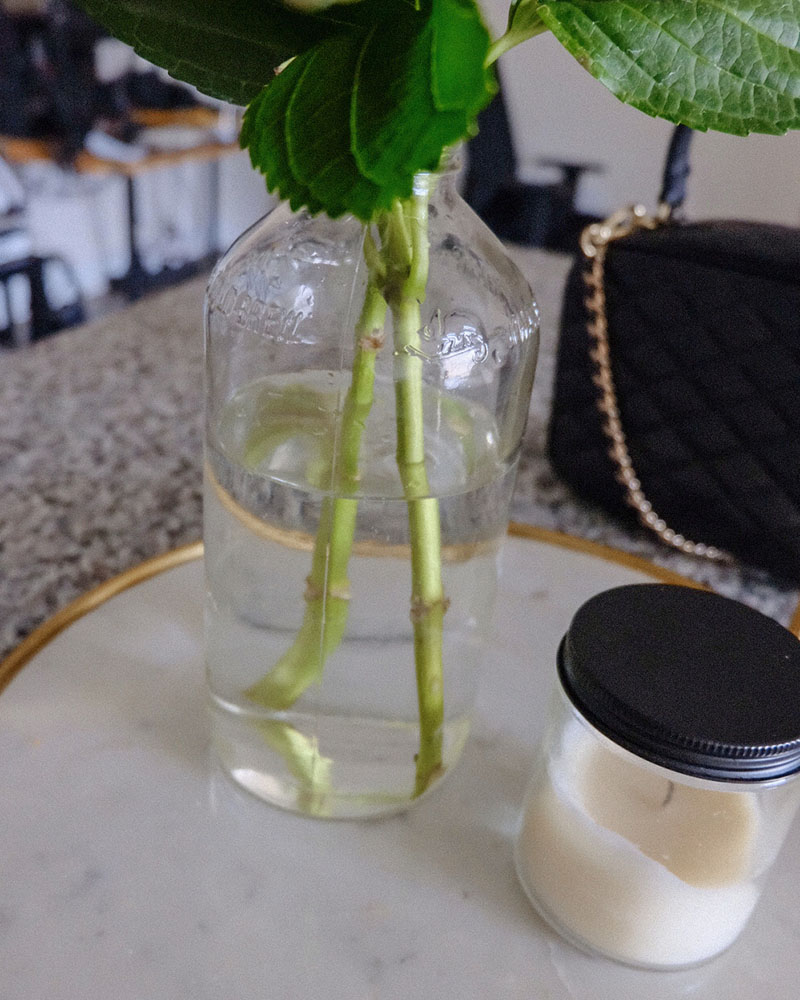 recycle chameleon cold brew bottle | how to make cut hydrangeas from wilting