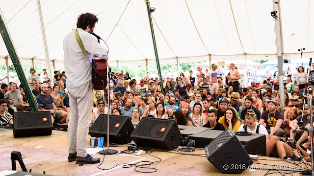 Destroyer at Hillside 2018 on July 14, 2018 Photo by John Ordean at One In Ten Words oneintenwords.com toronto indie alternative live music blog concert photography pictures photos