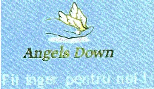 asociatia angels down