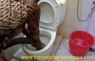sedot wc murah