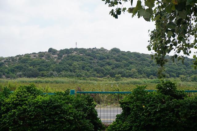 הנוף הפארק אלונה