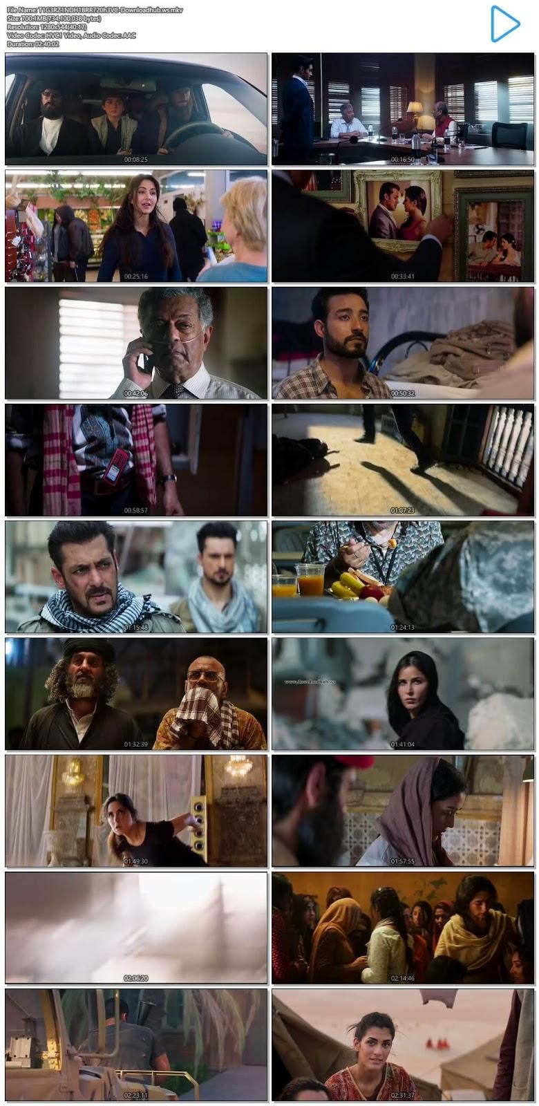 Tiger Zinda Hai 2017 Hindi 720p HEVC BluRay ESubs