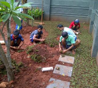 tukang taman di Kebon Pedes,jasa pembuatan taman di Kebon Pedes,jual rumput gajah mini di kebon pedes,tukang rumput di Kebon Pedes