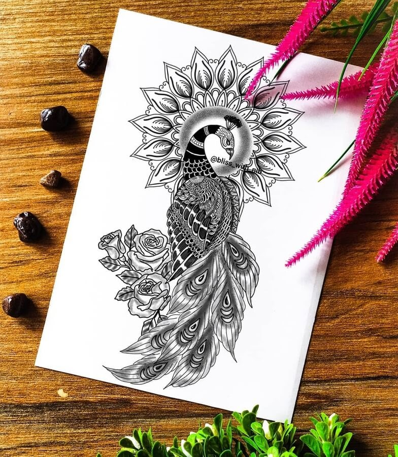 04-Peacock-Mandala-S-V-Apnar-www-designstack-co