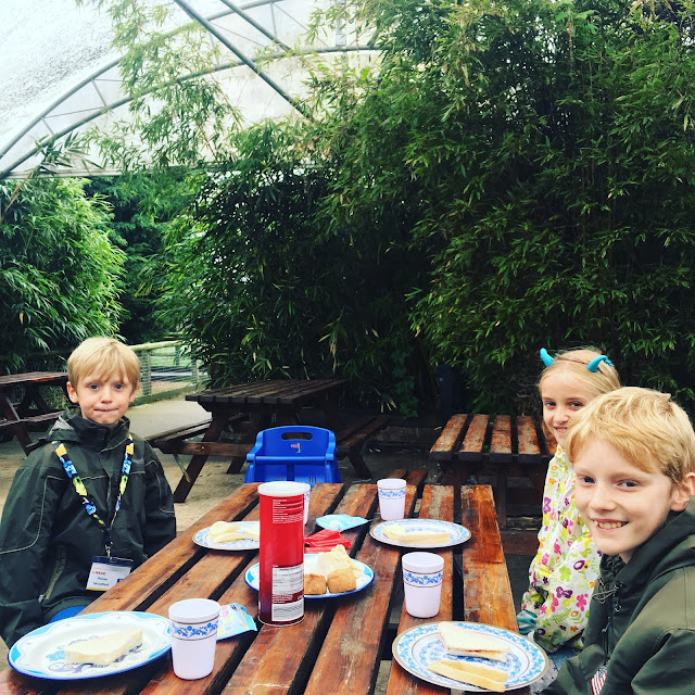 picnic lunch at Hamerton Zoo Park