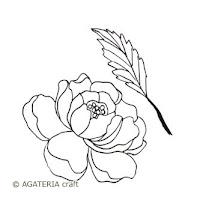 https://sklep.agateria.pl/pl/kwiaty/726-peonia-2-5902557824182.html