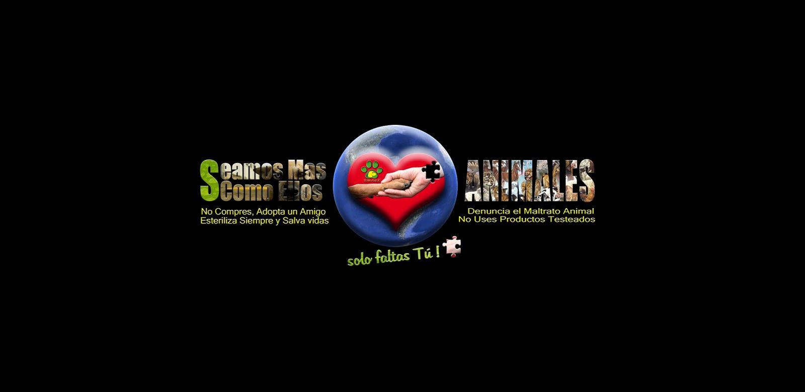 Seamos Mas Animales... Como Ellos - Magazine cover