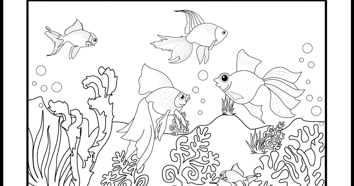 Goldfish Coloring Pages Minister Coloring