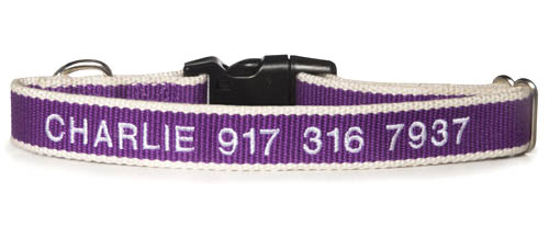 dog-collars-with-names