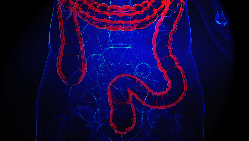 This Robot Could Prevent You From Ever Having To Get A Colonoscopy