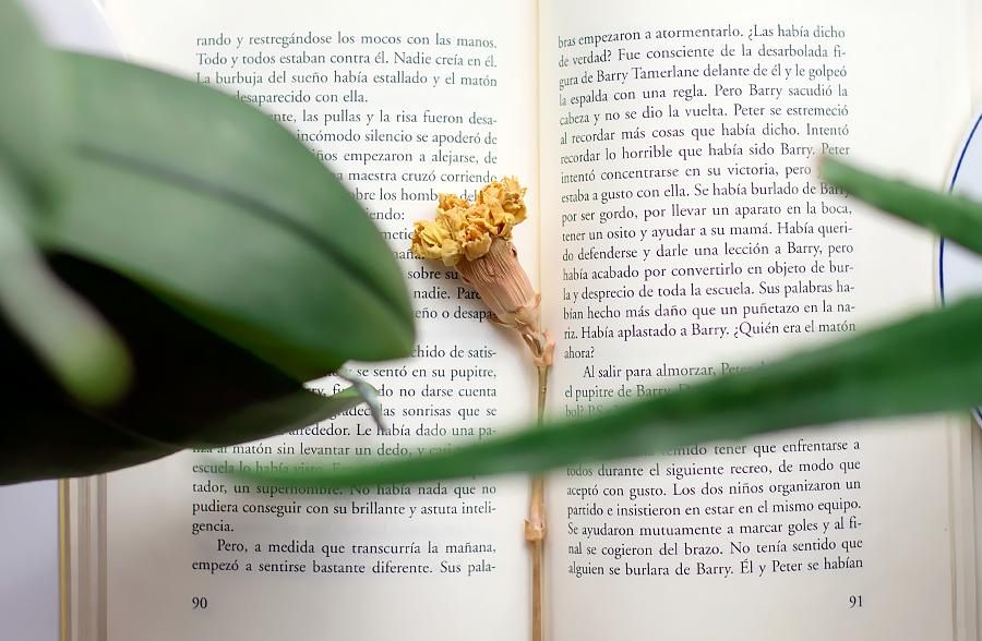 lecturas verano II libros recomendados