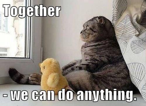 You Can Do It Cat Meme Speak of the Devil: A ...