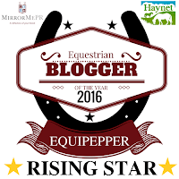 Equipepper - Rising Star of 2016