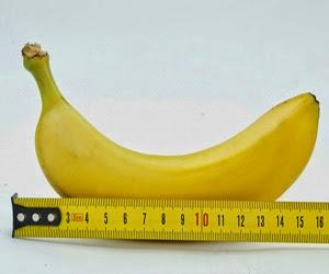 penis panjang alami, penis besar, perbesar penis alami, Mr. P panjang, cara alami