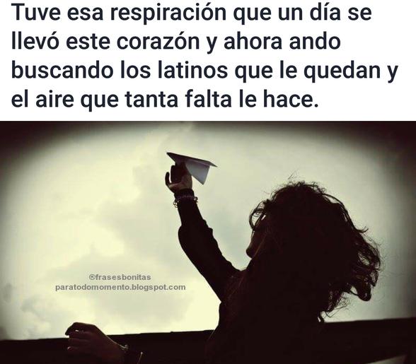 Tuve esa respiración que un día se llevó este corazón y ahora ando buscando los latinos que le quedan.