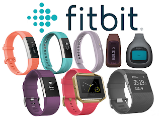 Fitbit User Guide Discover the Ultimate Fitbit Manual