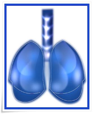 Dian Mundial sin tabaco
