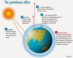Contoh, Penyebab, dan Dampak Global Warming