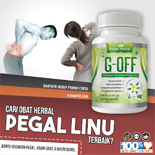 https://shopee.co.id/G-OFF-Obat-Pegal-Linu-Asam-Urat-Nyeri-Sendi-Herbal-BPOM-i.65937506.1104632955