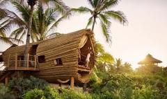 Rumah Bambu Bertenaga Surya di Meksiko