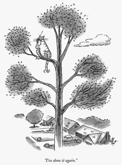 "Cartoon of a cat high in a tree and holding a cell phone to his ear saying ""I've done it again."""