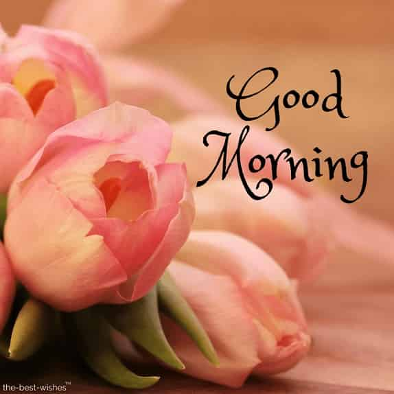 good morning wishes with images of flowers