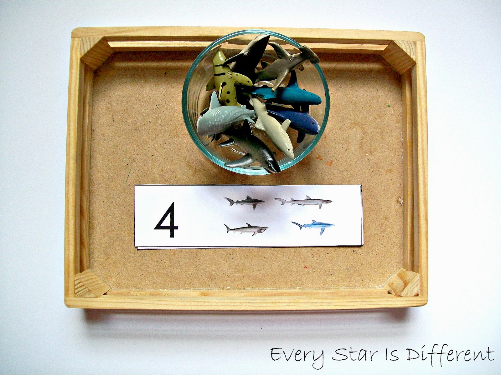 Shark Activities For Tots W Free Printables