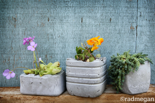 radmegan: in words and pictures: Molded Concrete Planters