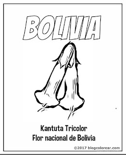 Kantuta Tricolor