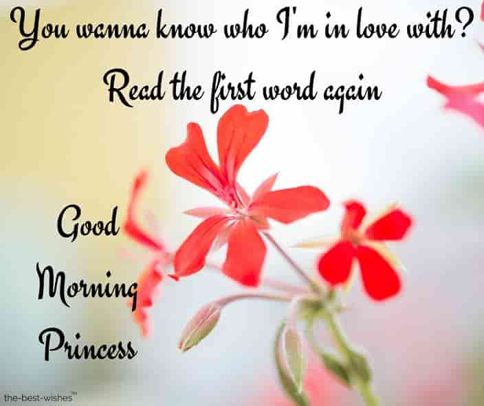 good morning my princess text