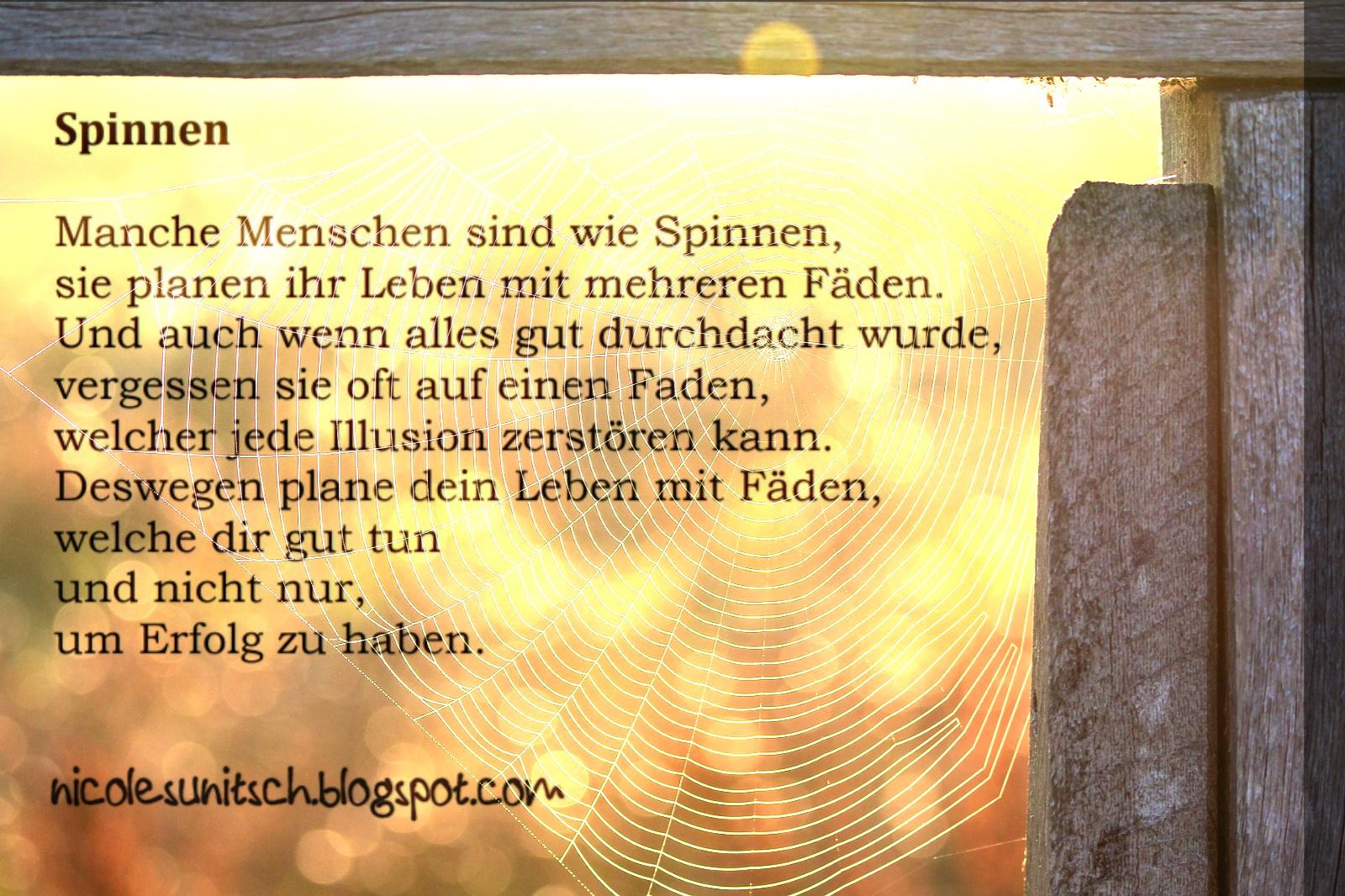 Gedichte Von Nicole Sunitsch Autorin Spruche Spinnen Aus Dem