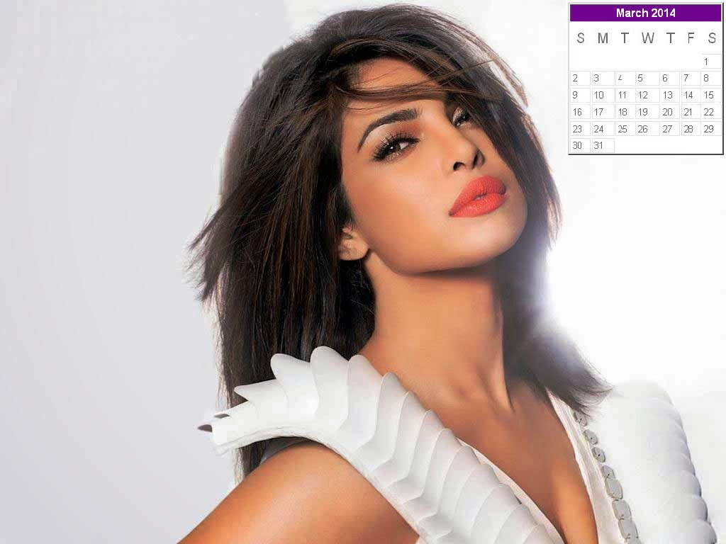 Priyanka Chopra New Year 2014 Calendar Hot Celebs