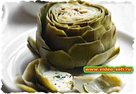 Artichokes with basil and lemon dipping sauce