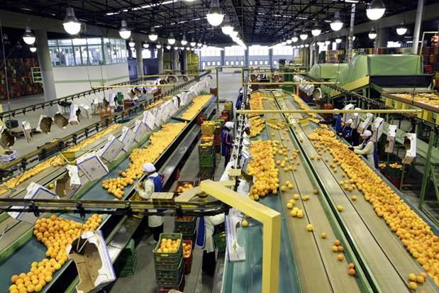 Ζητείται Γεωπόνος για συσκευαστήριο στην Αργολίδα