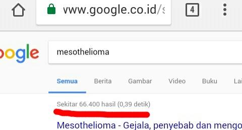 Result search engine google keyword meshotelioma