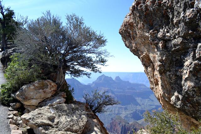 Большой каньон  - северная сторона, Аризона (Grand Canyon National Park, North Rim, Arizona)