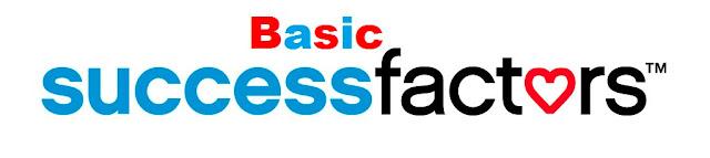 Basic Success Factors