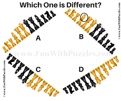 Answer of One One Out Chess Picture Riddle for Teens