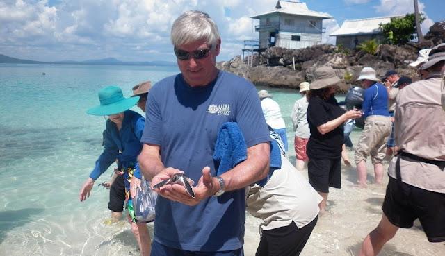 Pelepasan Bayi Penyu di Pulau Senoa Natuna