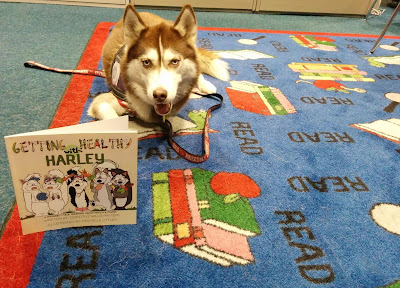 My interview on the Sibe Vibe radio show! #dogs #therapydog