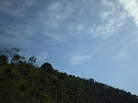 Reserva de Desenvolvimento Sustentável no Brasil  - Lei 9985/00