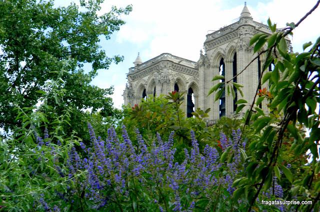 Paris, Catedral de Notre Dame