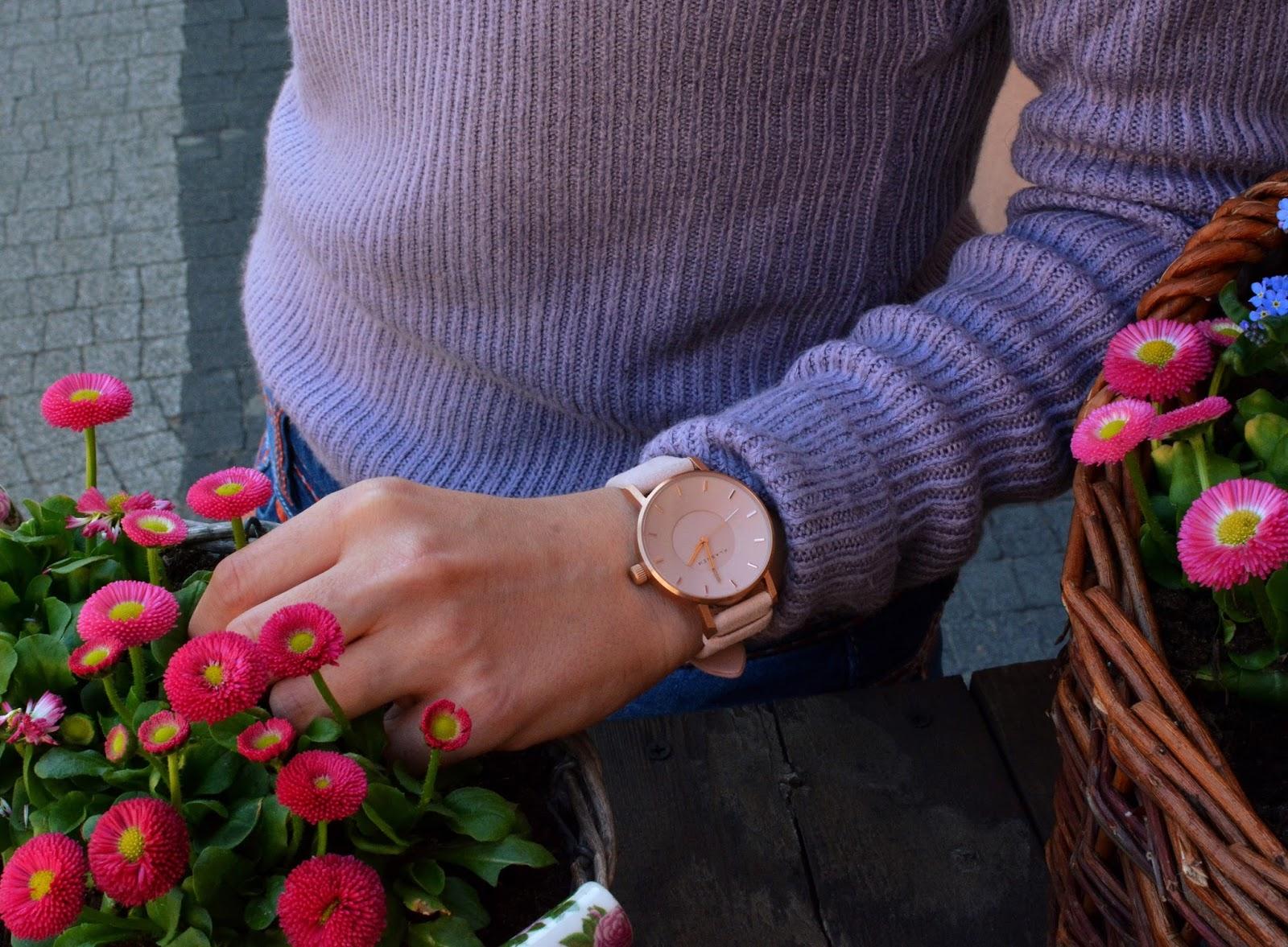 stokrotki, różowy, pudrowy róż