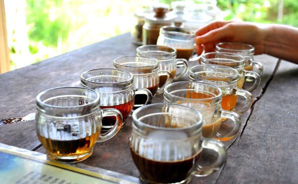 Sajian kopi luwak Bali di Ubud