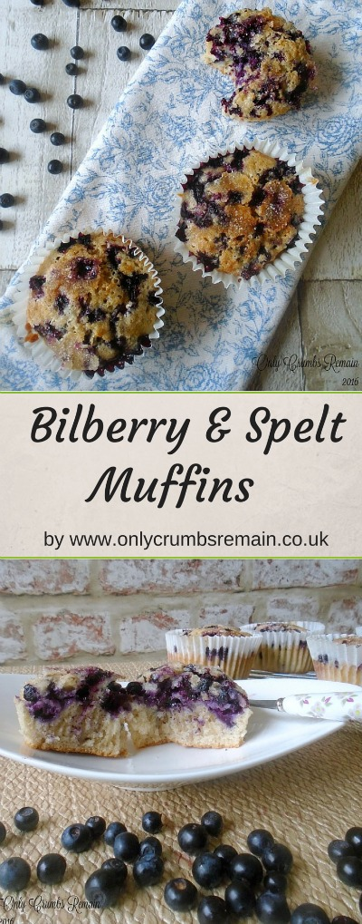 These Bilberry & Spelt Muffins make great use of foraged fruit.  The bilberries, similar to blueberries, bring a wonderful taste and aroma to this easy bake