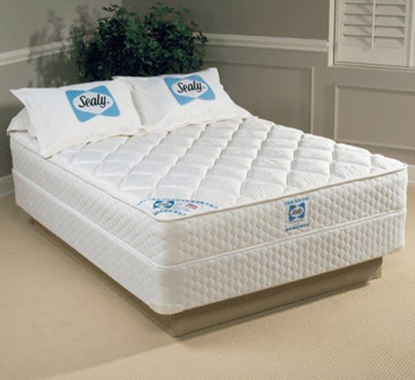 best mattresses for back support sante blog. Black Bedroom Furniture Sets. Home Design Ideas